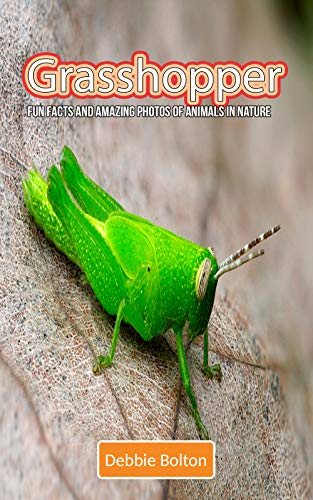 Grasshopper: Fun Facts and Amazing Photos of Animals in Nature (English Edition)