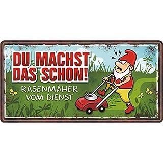 AV Andrea Verlag Großes Metallschild rostfrei Blechschild Schild mit lustigem Spruch im Vintage Retro Look (Du Machst das Schon 33535)