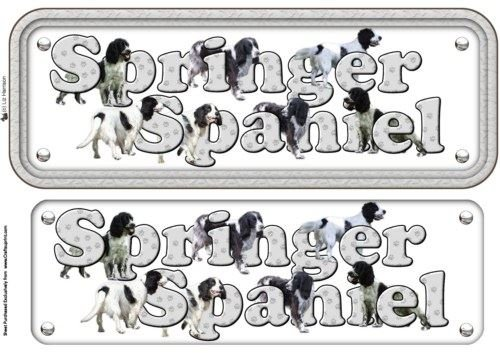 Springer Spaniel, Black & White Name Sign by Liz Harrison