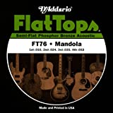 D'Addario FT76 Mandoline, Mandola, Mandocello und Mandobass Phosphor Bronze Saitensatz