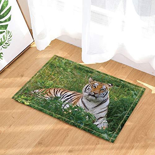 gohebe Safari Decor Wild Animal Tiger liegt auf der Gras Grün Forest Badewanne Teppiche rutschhemmend Fußmatte Boden Eingänge Innen vorne Fußmatte Kinder Badematte 39,9x59,9cm Badezimmer Zubehör - Gras-teppich Badezimmer