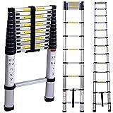 #1: Harsheen Sales 6.5ft 2M Portable Household Extension Telescopic Ladder Multipurpose Retractable Aluminum Alloy Straight Ladder Adjustable Ladder