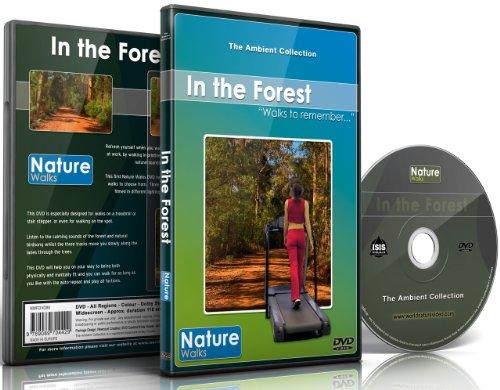 Natur Spaziergang - Im Wald