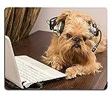 luxlady Gaming Mousepad Bild-ID: 27352774Hunderasse sitzt in der Nähe der Griffon Bruxellois Laptop Kopfhörer