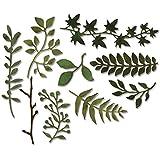Sizzix 661206 Garten Zweige von Tim Holtz Thinlits Stanzen, 9 in Packung, Stahl, mehrfarbig, 19.1 x 14.4 x 0.4 cm