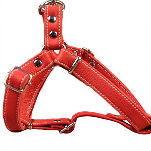 Hundegeschirr Anti Zug Softgeschirr aus Leder Vest Harness Verstellbare Brustgeschirre Norweger Ausbruchsicher Haustier Ledergeschirr Weichem für Kleine Mittlere Grosse Hunde (M, Rot)