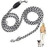 Hundetraining führen, Peteast 2,5M verstellbare Durable Nylon Reflektierende Hundeleine Pet Blei für kleine, mittlere und große Hunde