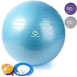 Win.max 75cm Swiss Ball Bola de yoga pelota de gimnasia - Anti Burst-Ideal para Crossfit, Ejercicios Yoga, Terapia Prenatal, Mejora Postura y Entrenamiento Muscular