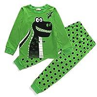 Toddle Boys Pyjamas Set Dinosaur Pjs for Boy Winter Nightwear Kids Pyjama Long Sleeve Sleepwear Clothes 2 Pieces 100% Cotton Age 1-7 Years (5-6 Years, Dinosaur 3)
