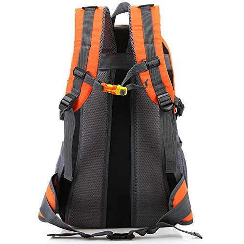 Draussen Sport Klettern Reise Schultern Camping Wasserdicht Wandern Tragbar Nylon Rucksack Dunkelgrün
