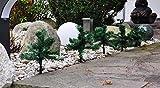 LED 5x Leuchtstäbe 25x13cm Tannenbäume 60 LED´s Warmweiß inkl. Erdspieße Außen