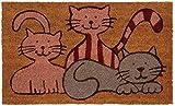 Paillasson 3 petits chats en coco