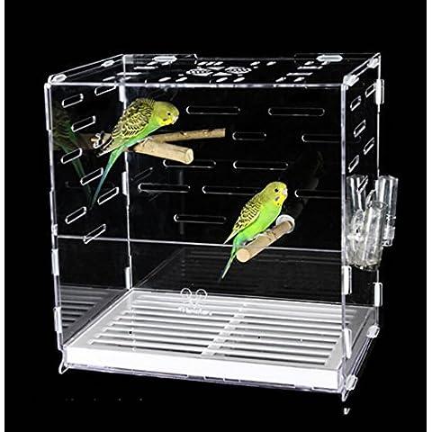 XWG Birdcage / Bird Cage Parrot Landing Gabbia / Grande Bird Cage / trasparente ad alta qualità Lark Bird