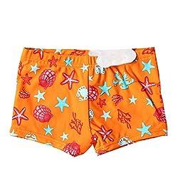 Fashion Kidswear Ba ador...