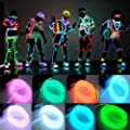 Lychee 15ft 5M Neon Light El Wire Battery Pack for Parties,with Battery Box Kit