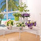 LJ Racchette da fiori multilayer in ferro di stile europeo Il rack di vaso da fiori in scala di angolo ( Colore : Bianca )