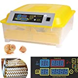 Hehilark Profesional Completamente automático Digital incubadora de Huevos con Control de Temperatura para Aves,Gallinas,Patos Huevos de Aves de Corral escotilla (48 Huevos)