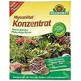 NEUDORFF - MyccoVital Concentrado - 1 g