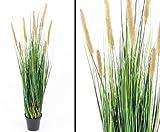 Graspflanze in verschiedenen Grüntönen mit braun blühenden Binsen, Gesamthöhe inkl. Topf ca. 100cm - Kunsblumen künstliche Blumen Kunstpflanzen künstliche Pflanzen Blumen