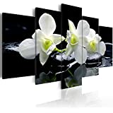 Cuadro 200x100 cm - 3 tres colores a elegir - 5 Partes - Formato Grande - Impresion en calidad fotografica - Cuadro en lienzo tejido-no tejido - flores Naturaleza rosado naranja negro blanco b-B-0009-b-n 200x100 cm B&D XXL