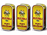 Sardellen Rizzoli Sardellenfilets in würziger Soße (Tre Gobbetti)