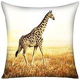 Violetpos Kissenbezug Giraffe Afrika Prärie Home Decor Werfen Kissen 80 x 80 cm