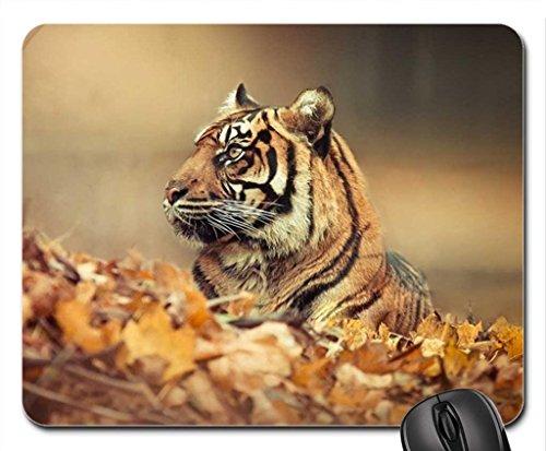 Tiger camo Mouse Pad, Mousepad (Cats Mouse (7.5 Camo)