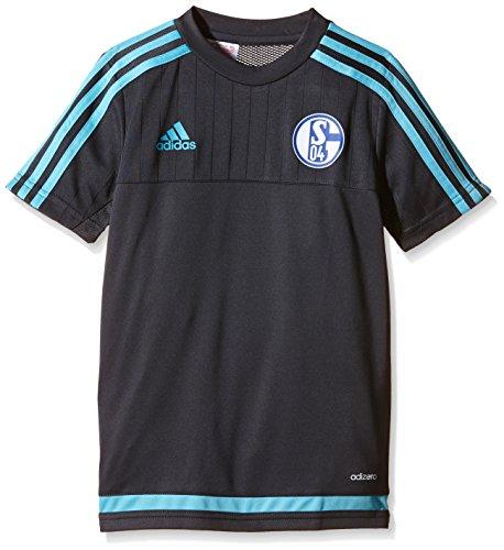 adidas Jungen Kurzarm Trikot FC Schalke 04 Training, Night Grey/Super Cyan S12, 176, AB2034