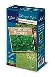 Caillard PFCM18258 Graines de Dichondra Repens 250 g 25 m²