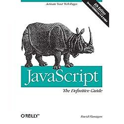 JavaScript: The Definitive Guide (Definitive Guides)