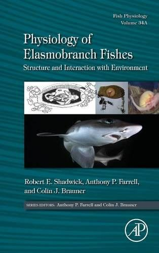 physiology-of-elasmobranch-fishes-structure-and-interaction-with-environment-fish-physiology