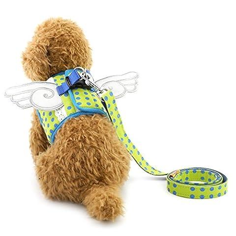 Ranphy Petit Chien/Chat en maille filet souple Dot Step en PET Harnais sans tirer Doggy Gilet Harnais avec des ailes Laisse Ensemble