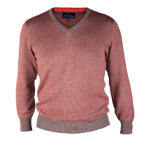 Peter Scott - Pull - Homme bouleau