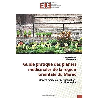 Guide pratique des plantes médicinales de la région orientale du Maroc: Plantes médicinales et utilisations traditionnelles