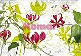 Fototapete Gloriosa - rote Blüten vor weißer Steinmauer - Größe 368 x 254 cm