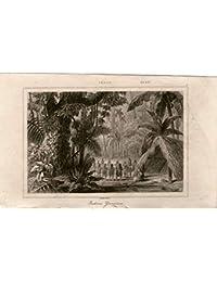 Desconocido Generico 1841 - Impresión Antigua-Peru Indio Yuracares - LAMAITRE-Old PRINT-