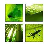 Kunstdruck - Set Pflanzen - Bild auf Leinwand - je 20x20cm - 4teilig - Leinwandbilder - Pflanzen & Blumen - Natur - Bambus - Gecko - Bananenblatt