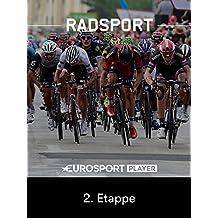 Radsport: 54. Tour de l Avenir 2017 in Frankreich - 2. Etappe