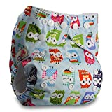 Littles & Bloomz, Reusable Pocket Cloth Nappy, Fastener: Popper, Set of 1, Pattern 8, Without Insert