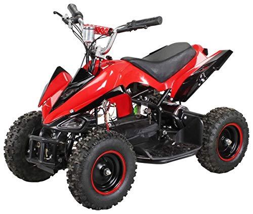 Actionbikes Motors Mini Elektro Kinder Racer 800 Watt ATV Pocket Quad Kinderquad Kinderfahrzeug… (Rot/Schwarz)