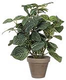 MICA Decorations 966059 Plante Artificielle Petites et Feuilles Vertes