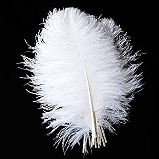 PET SPPTIES 20PCS Blanc Naturel Autruche Plumes Grandes décorations pour Vacances Party Dress Home d'autruche Plumes PS023 (30-35cm)