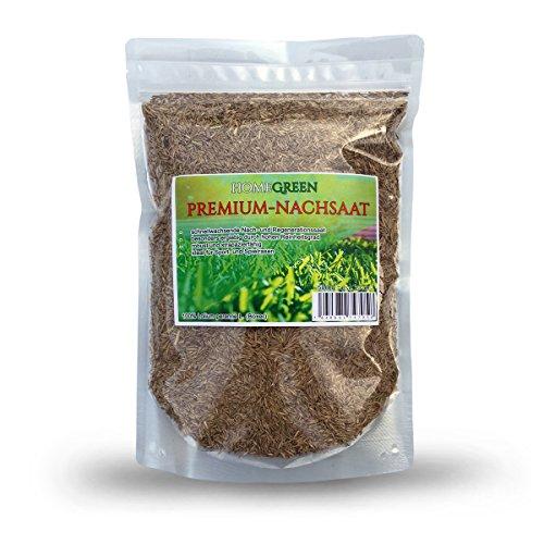 HomeGreen Rasensamen Rasensaat für 27qm Rasen, 500g Nachsaat, Lorlium Perenne L.