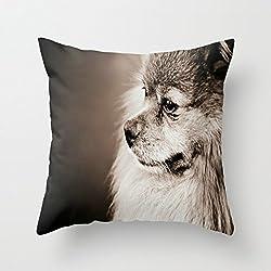 Bestseason 20x 20pulgadas/50por 50cm perros manta fundas de almohada, cada lado es apropiado para comedor, silla, Parejas, hijo, salón, asiento de coche