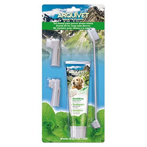 Arquivet 8435117825048 - Set Dental Sabor