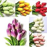 New True Tulip Bulbs,Tulip Flower,(Not Tulip Seeds),Flowers Symbolizes Love,Tulipa Gesneriana Flower Plant For Home Garden -2 Bulbs mixed