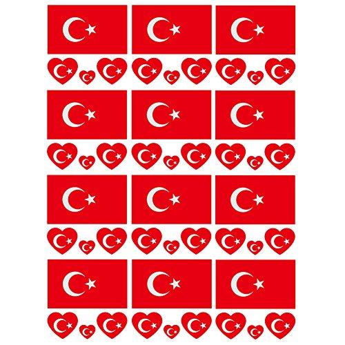 SpringPear 12x Temporär Tattoo von Flagge Türkeis für Internationale Wettbewerbe Olympischen Spiele Weltmeisterschaft Wasserfeste Fahnen Tätowierung Flaggenaufkleber Fan Set (12 Pcs)