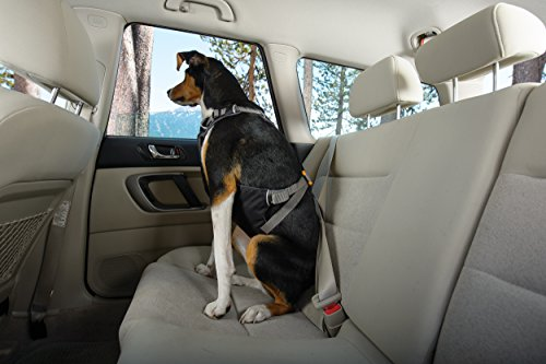 RUFFWEAR Car Safety Harness for Dogs, Miniature Breeds, Adjustable Fit, Size: XX-Small, Obsidian Black, Load Up Harness 6