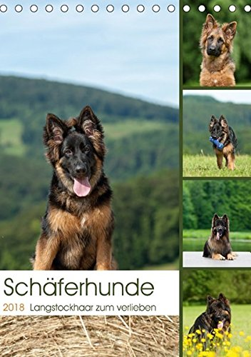 Schäferhunde Langstockhaar zum verlieben (Tischkalender 2018 DIN A5 hoch): Langhaar Schäferhunde...