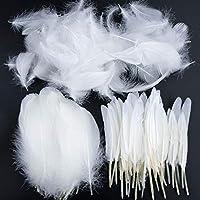 Plumas de Ganso, 250 pcs Blanco Natural Plumas de Gallo Manualidades Decoración para Disfraces Hats